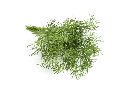 A bunch of fresh dill isoleted on a white background. Stock Photo