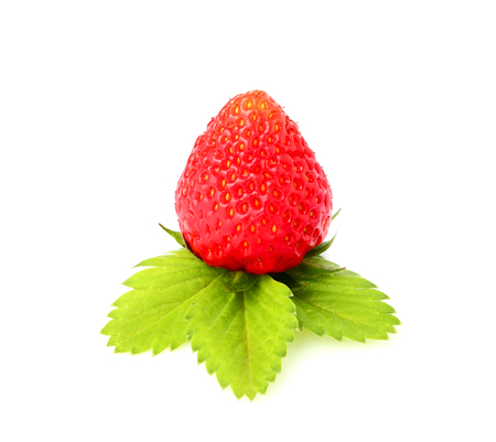 Strawberries with leaves isolated on white background.