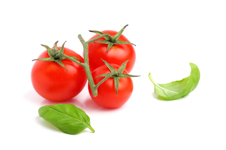 Fresh cherry tomato with basil leaves isolated on white background. Stock Photo