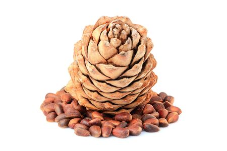 Pine nuts and ripe pine cone isolated on white background.