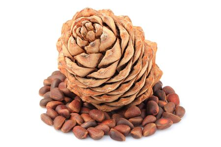 Pine cone with pine nuts closeup on white background. Stock Photo