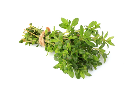 Sprigs of thyme in a bundle isolated on white background.