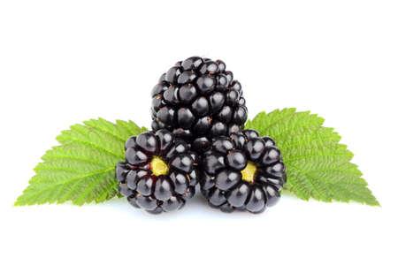Ripe juicy blackberry isolated closeup on white background.