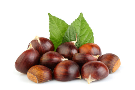Chestnuts with leaves isolated on white background. Hippocastanum. Stock Photo