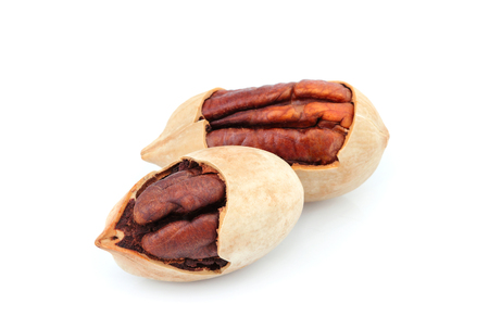 Pecan nuts isolated closeup on white background.
