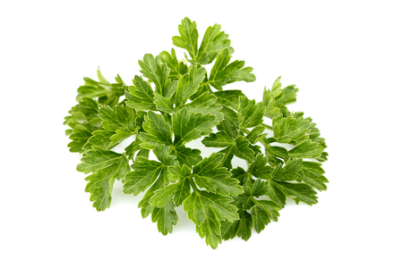Fresh parsley leaves isolated on white background.