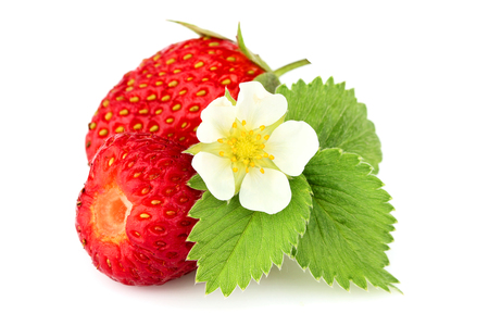 Homemade strawberry with strawberry leaves and flower isolated on white background. Stock Photo