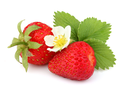 Natural homemade strawberry with strawberry leaves and flower isolated on white background.
