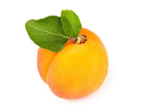 Fresh apricot with leaves isolated on white background.