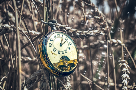 Antique pocket watch broken in wheat field with soap bubbles