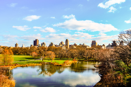 winter park: A black and white view of Central Park, during winter, with people walking and surrounding nature. Stock Photo
