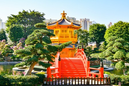 luxuriant: The Nan Lian Garden in green oasis of relaxation in the heart of Hong Kong, with a luxuriant nature.