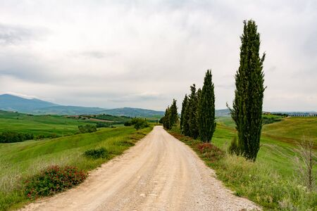 terrapille: Panoramic view of the famous road for The Gladiator movie of Terrapille in Val dOrcia