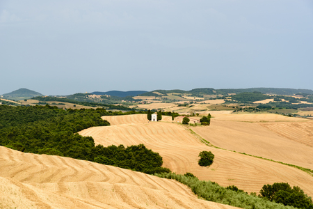 orcia: Tuscan landscape with a little church at the horizon surronded by a wheat field and trees Stock Photo
