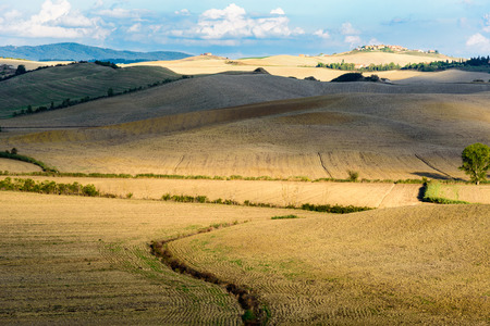 Panorama of the Tuscan countryside near Siena