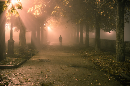 Man walking along a path in a park shrouded in the fog Stock Photo