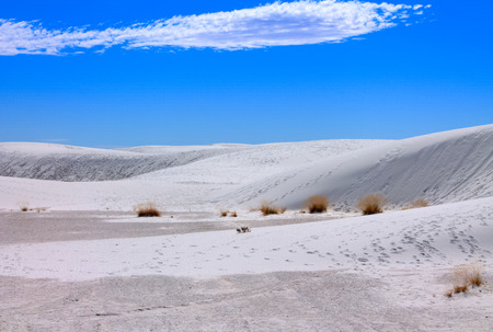 View of the White Sands National Monument in New Mexico, United States