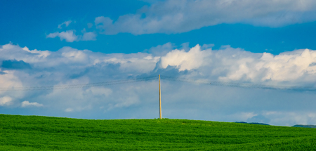 A light pole in the middle of a green wheat field Stock Photo