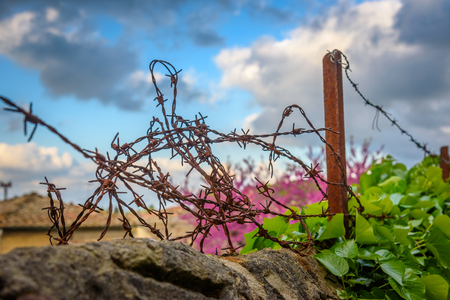 Close up of a barbed wire over a wall Stock Photo