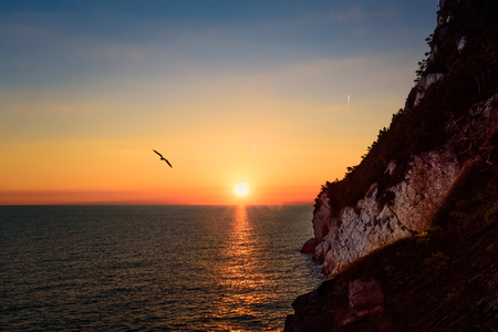 Scenic sunset from a cliff with sun sea and a silhouette of a seagull.