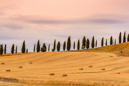 View of a summer day in the Italian rural landscape. Stock Photo