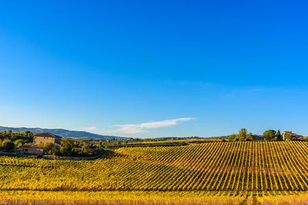 Tuscany landscape at sunset in autumn. Chianti wine region, Italy.