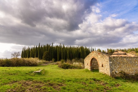 Country landscape with a cypress forest and the ruins of an abandoned building in the foreground.