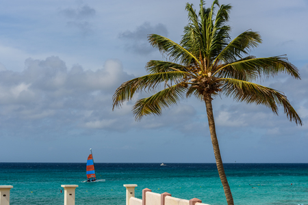 Scenic view of the Caribbean sea from the Arashi Beach in Aruba