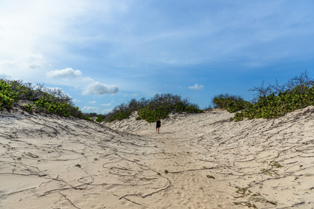 An adult man alone in the desert of the Arikok National Park in Aruba. Stock Photo