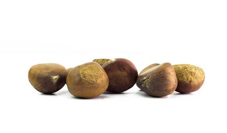 horse chestnut seed: Bunch of horse chestnuts isolated on white background. Stock Photo