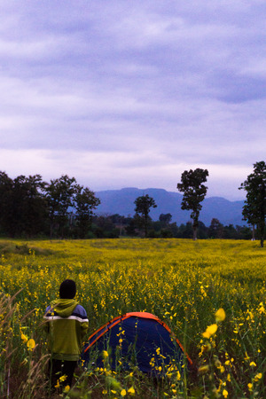 A man standing on a camping site in a field with yellow flowers