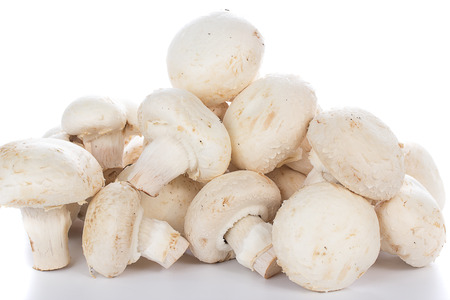 Button mushrooms on white background with reflection
