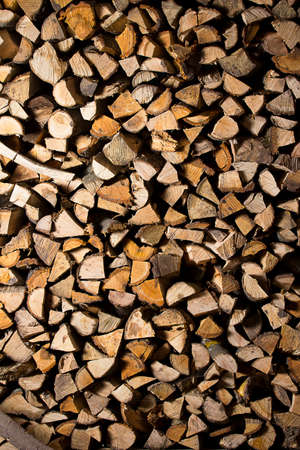 kindling: firewood  Dry firewood in a pile for furnace kindling