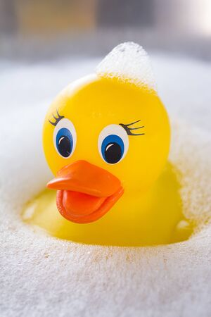 rubbery: Yellow rubber duck floating in soap suds