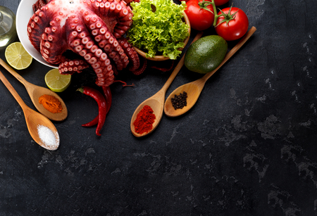 freshly prepared: Freshly prepared octopus with vegetables and spices in wooden spoones over dark stone background