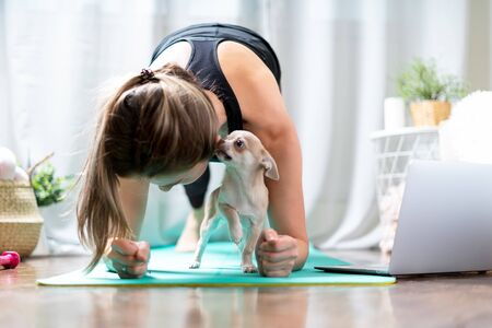 Young sporty woman working out and using laptop at home in living room, doing yoga or pilates exercise on turquoise mat, standing in plank pose with cute puppy dog. Home fitness concept.