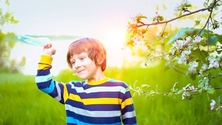 Happy kid boy throw away medical protective mask and breathing air, smelling flowers of apple, standing in blossoming apple tree. Cute child outdoors at sunset. End of quarantine, lockdown concept. Archivio Fotografico