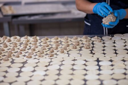 modeling of dumplings, dumplings factory Stockfoto