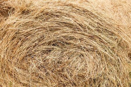 straw, straw stack background