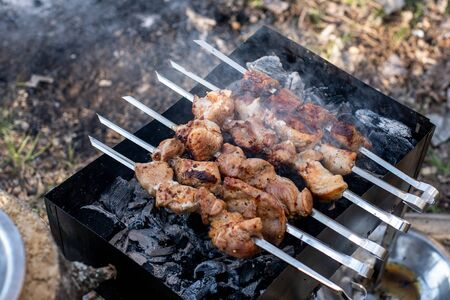 kebabs on skewers on the grill iron