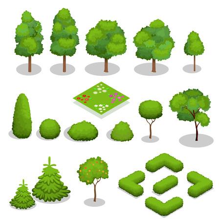 boom: Isometrische bomen elementen voor het landschapsontwerp. groene bomen en struiken op wit wordt geïsoleerd