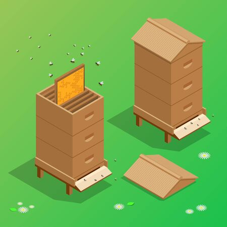 bee house: Apiary honey bee house apiary vector illustrations.