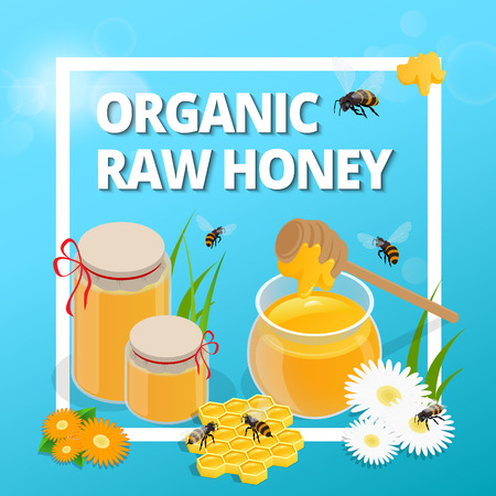 food production: Organic raw honey. Greeting card. Honey natural healthy food production. Bee, flowers, beehive and wax. honey bee vector. Vector illustration EPS10