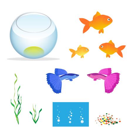guppies: Isometric Aquarium with fishes, algae and decorations