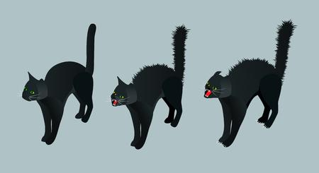 hissing: Isometric Black Cat. Set calm cat, meowing, hissing vector illustration Illustration