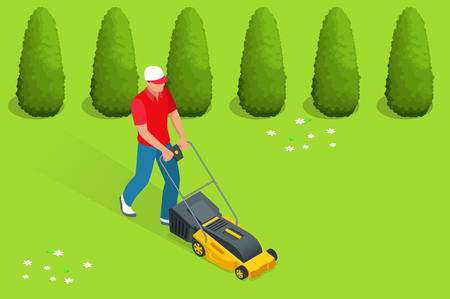 grass blades: Man mowing the lawn with yellow lawn mower in summertime. Lawn grass service concept. Isometric vector illustration