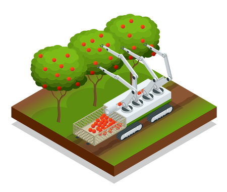 Isometric automatic guided robots harvest fruit from trees. Vettoriali