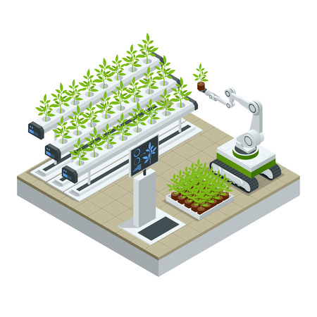 Isometric modern smart industrial greenhouse. Artificial intelligence robots in agricultural