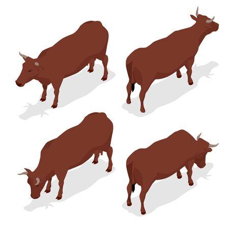 Isometric dairy cattle set. Çizim