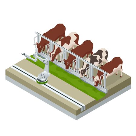 Isometric irrigational smart robotic system on the dairy farm. Automated agriculture, technology. Robot farmers. Farm cowshed with milking cows eating hay.